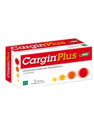CARGIN PLUS 12FL MON C/VIT