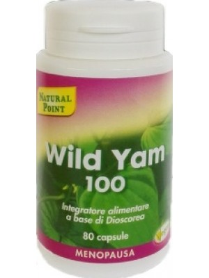 "WILD YAM 100 80CPS ""N.POINT"""
